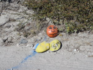Half marathon mile marker stones painted yellow with '5 M' to mark 5 miles. One stone painted red with a funny face on it.